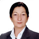 Prof. Dr. Ayşe YALIN